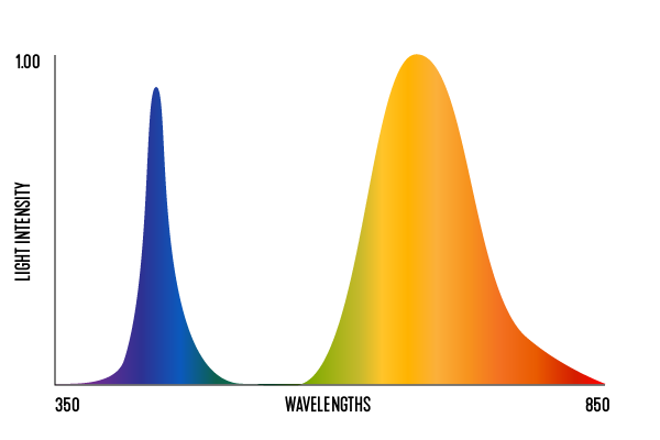 1807_light_spectrum_02_duo-spectrum.png