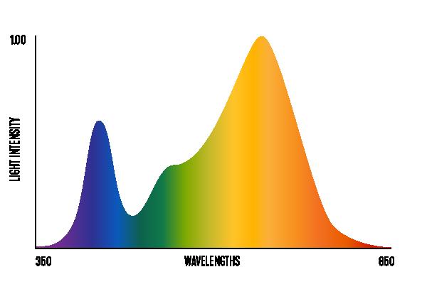 light-spectrum-v02_flower-spectrum.png