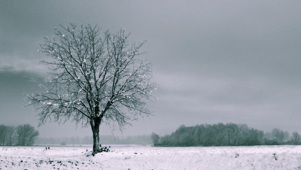 Ultra HD, 4K, Landscape, 62555578.jpg