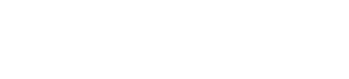 The Old Stone Tavern