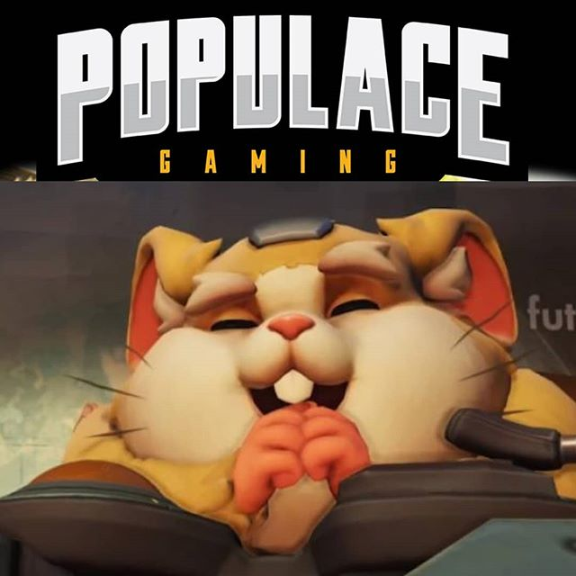 Do you have the Balls to handle some Hammond?! #wreckingball is LIVE! Lets see how our captain and #Dva fair against the Muscle Hamster tonight starting at 9pm! Twitch.tv/PopulaceGaming