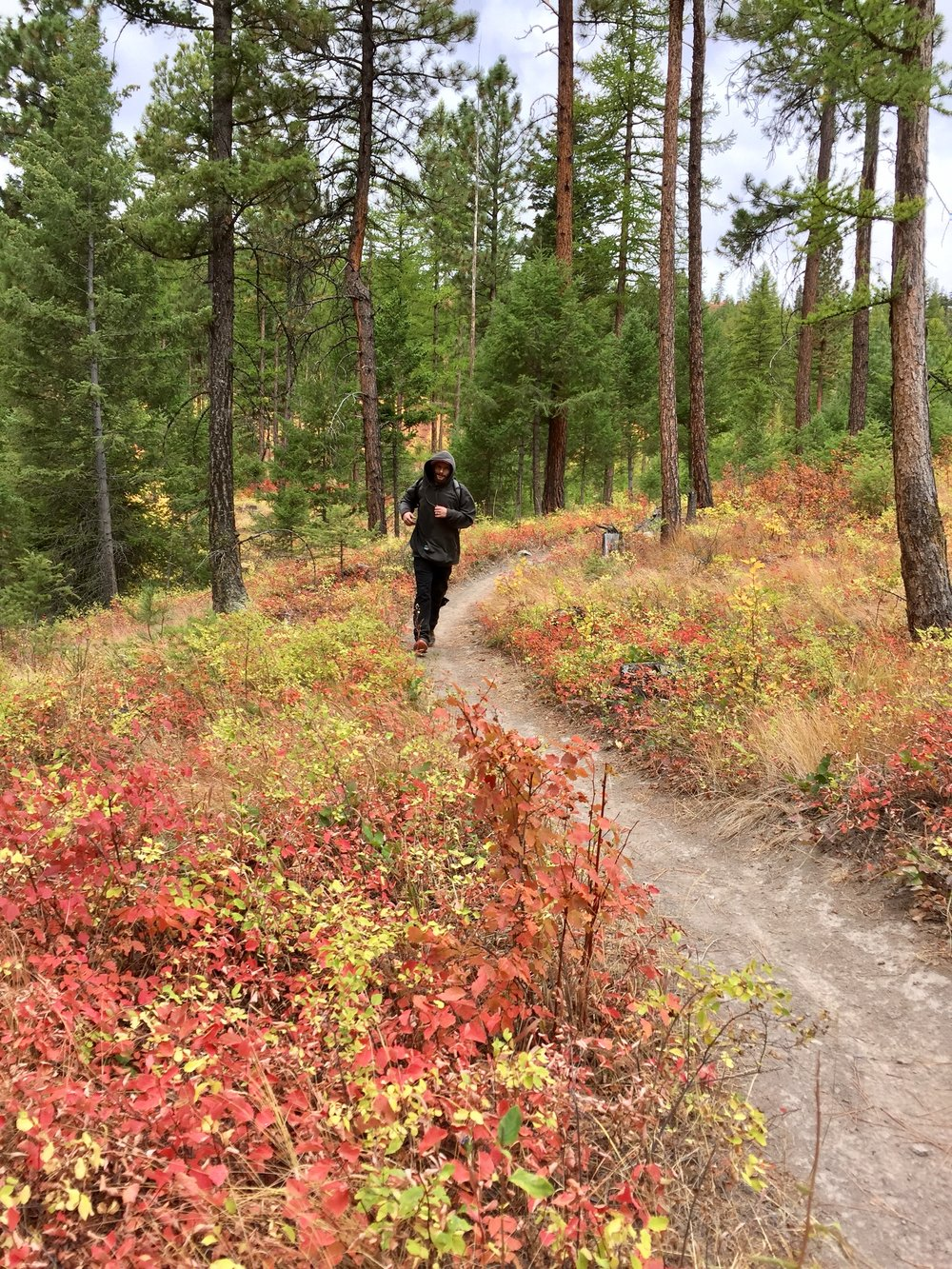 foys to blacktail trails trail marathon ftbtIMG_6640.JPG
