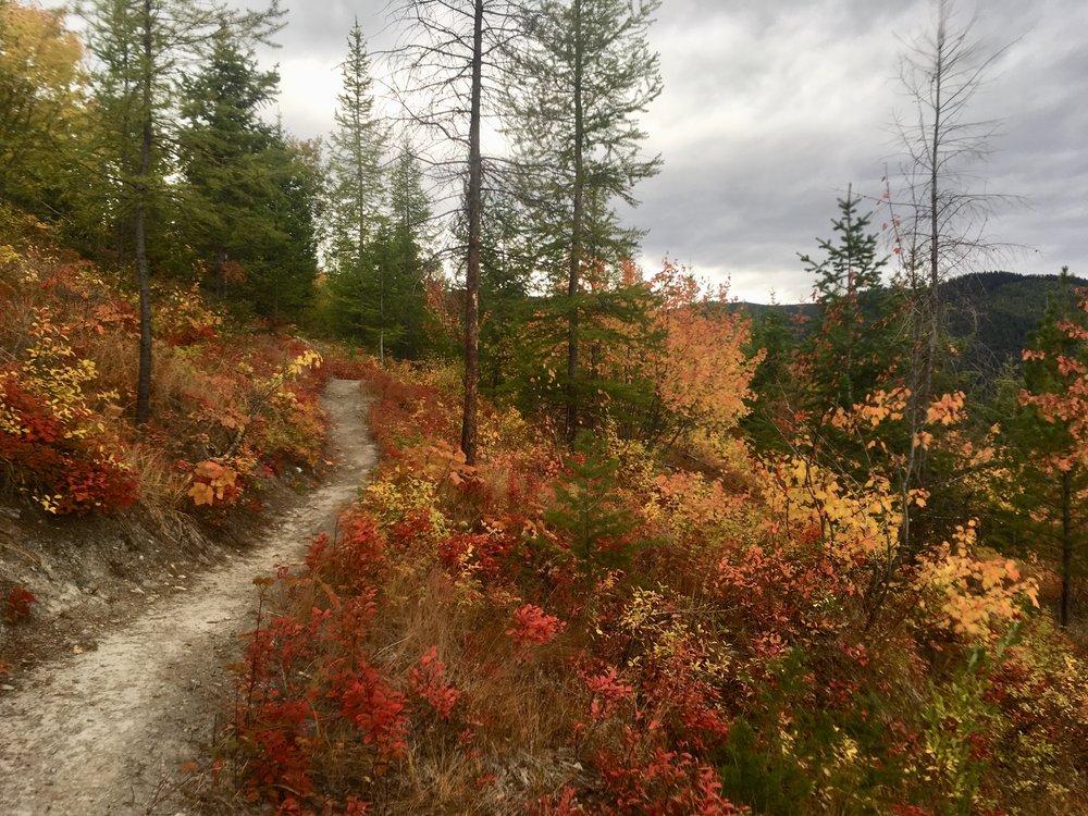 foys to blacktail trails trail marathon ftbtIMG_1719.JPG