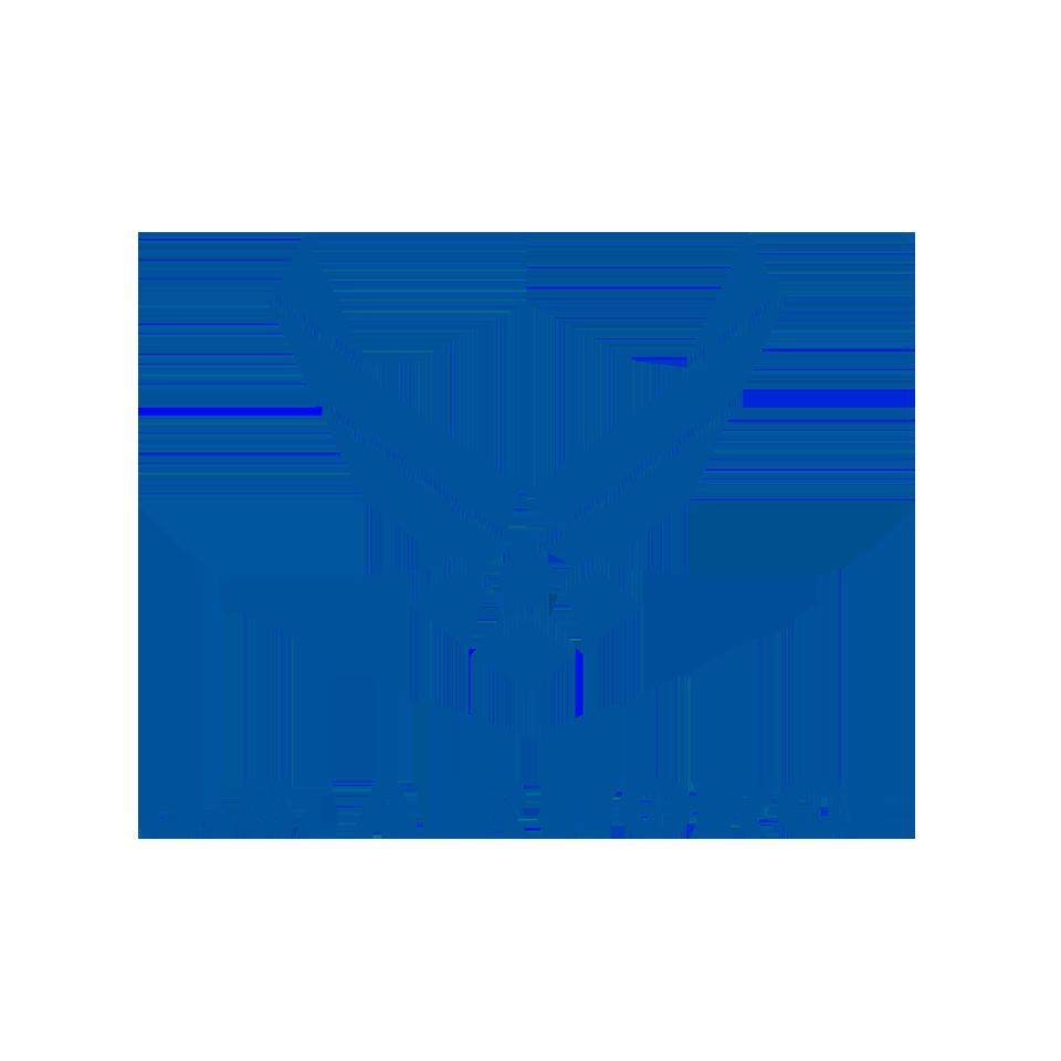Logos_AirForce.png