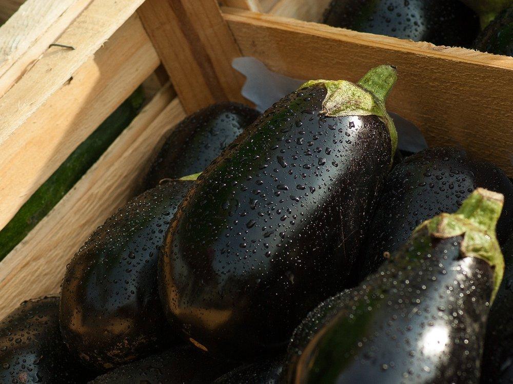 eggplant-1707629_1280.jpg