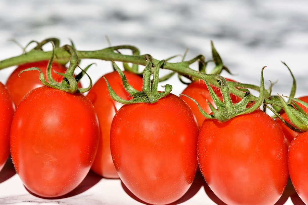 tomatoes-3480643_1280.jpg