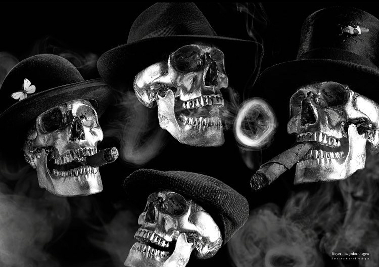 Hagedornhagen Copenhagen makes Noyer's visual expressions with a black and white photography with an unusual combination og cigar smoking skulls painted silver coloured and wearing hats.