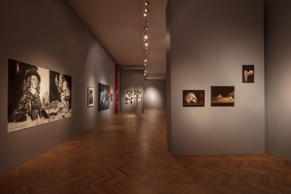 Pohled do expozice