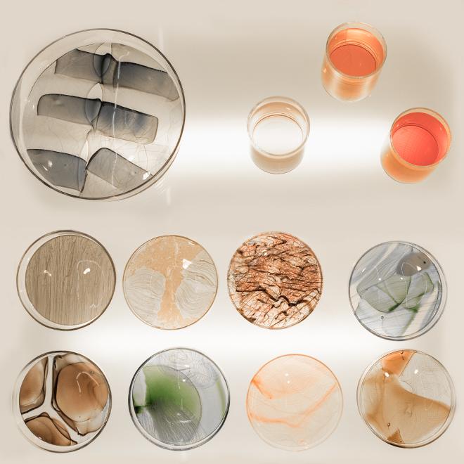 ambiente-fair-round-vessel-glass-petri-dish.jpg