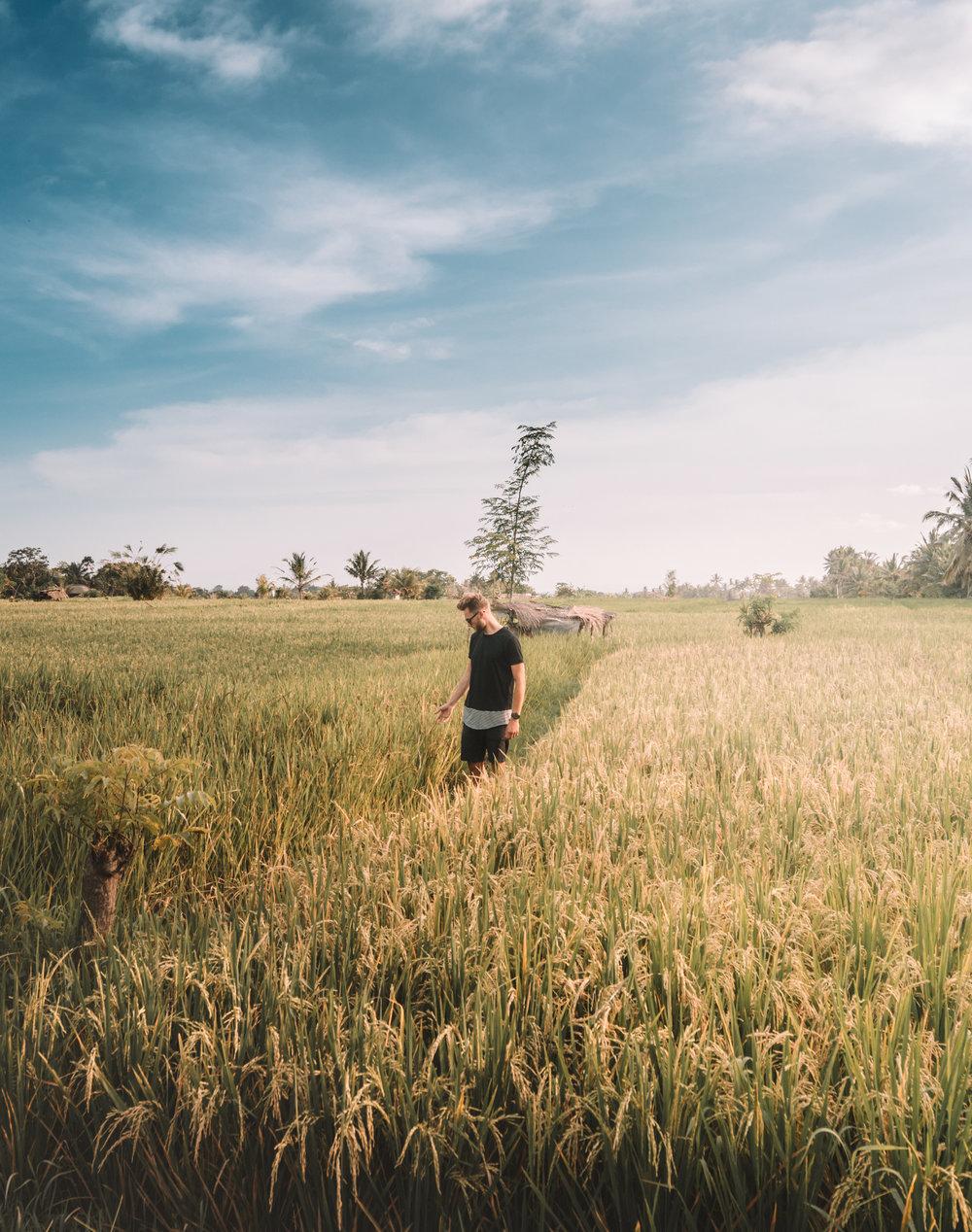 Bali Edit 1.jpg