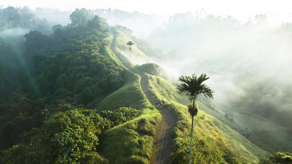 Ridge Walk.jpg