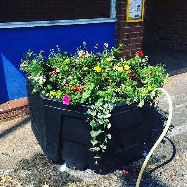 A huge thank you to Mickleover Group and caring residents for allowing us to plant up their brand new street planters. The hose pipe is filling the massive reservoir beneath the planter which uses a fabulous wicking system to keep the compost moist so the plants can thrive. #villagers #planters #amberol  #mickleover #firsfarmnursery #pippinscoffeeshop #summerplants #bestkeptvillage #village #community #derbyshire #cloverpeatproducts #cloverpeat #syngentaflowers #ballcolgrave #volmary
