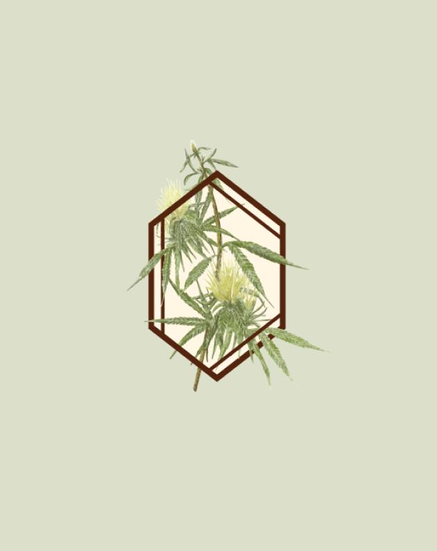 botanist-icon.png