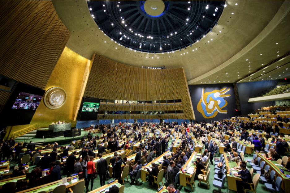 UN General Assembly votes on World Bee Day