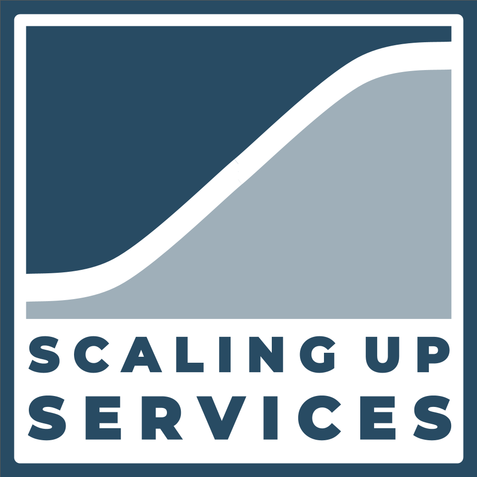 Michael Czirjak, Co-Founder and Partner at C2R Ventures — Scaling Up