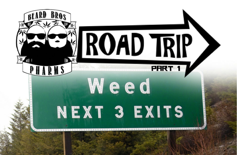 ROAD TRIP 1.png