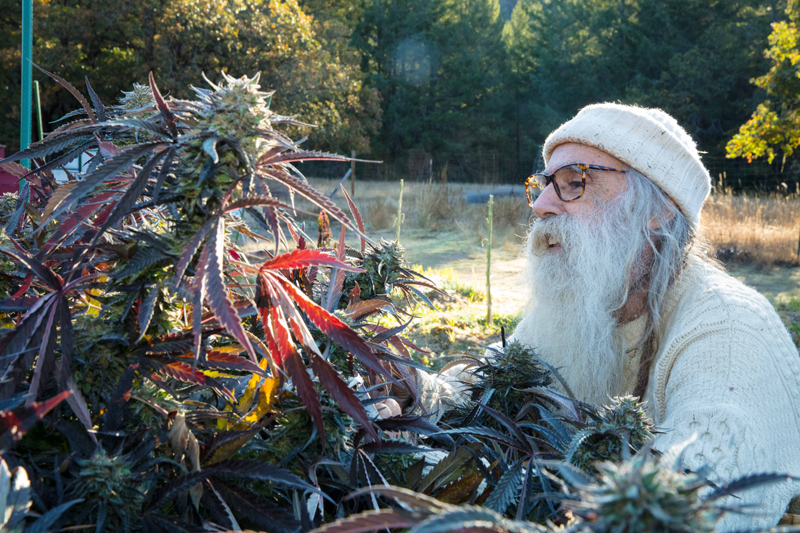 Swami in his garden, 2018 (photo by Jim Olive)