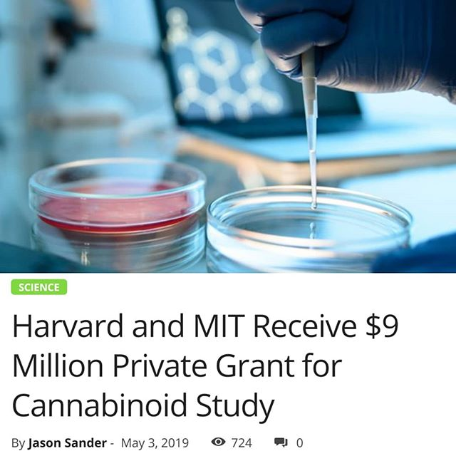 "In an effort to shed some light on the unknown that is cannabinoids and their effects on the brain, a private donor is gifting #Harvard and #MIT to help fund much needed scientific research on the matter. WBUR-FM, a public radio station owned by Boston University, reported on the story, saying that the donation is believed to be the largest private gift to date to be given to study cannabis and how it impacts the brain. - The private grant money is coming from Bob Broderick, who is an investor in Manhattan, New York. Broderick reportedly made 'tens of millions of dollars by investing in the legal marijuana industry in Canada', he told WBUR-FM. This donation to fund scientific research on cannabis not only showcases the lucrative potential of the industry, but how many professionals love to give back to support the plant medicine, because they believe it its potential. - Even though there have been many studies done on cannabis, how it can help with pain management, and how it impacts the brain, Broderick says that there is still a bit of a stigma attached for young researchers to do so. - ""People take risks when they say they are going to start doing cannabis work. For a young researcher at MIT or Harvard to say, 'I'm going to pivot my career and study the effects of cannabis,' I don't think that's something that would have happened five years ago,"" Broderick said. - Broderick went on to point out that even though many studies on #THC and #CBD have been conducted, we're still somewhat in the dark as to how cannabinoids impact the human brain. - ""Two of them have been studied in some detail – THC and CBD,"" Broderick says. ""Even for those, I have to say our #knowledge is very, very sparse in terms of how they actually have their effects on the #brain. But for many of the other hundred #cannabinoids or so we know – we really know nothing,"" Broderick said. - Cont. In Comments 🌲🌲🔥🔥💨💨 #Beardbros_Pharms #BeardBrosMedia #BBMedia #CannabisNews #losangeles #la #california #cannabiscommunity #cannabis #marijuana #real #life #weshouldsmoke"