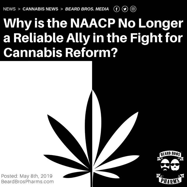 "I went into this article pretty set in my opinion and pretty frustrated by the about-face pulled by the NAACP here in the 11th hour of cannabis reform. But deeper research and some forced perspective have opened my eyes a bit wider to the fact that true social justice reform is a full-spectrum challenge. - This past Saturday, Illinois Governor J.B. Pritzker announced a new piece of legislation that will effectively legalize the recreational adult use and possession of cannabis for all residents ages 21 and up. Expected to take effect by the first day of 2020, the bill would make Illinois the 11th state to take the leap to legal weed. - Notable parts of the bill include a provision to expunge – reduce or eliminate – as many as 800,000 prior cannabis-related convictions as well as language stating that those convictions cannot preclude anyone from getting a job in the new state-regulated cannabis industry. - ""We are taking a major step forward to legalize adult use cannabis and to celebrate the fact that Illinois is going to have the most equity-centric law in the nation,"" said the governor at a weekend press conference, adding, ""For the many individuals and families whose lives have been changed ― indeed hurt ― because the nation's war on drugs discriminated against people of color, this day belongs to you too."" - In support of the bill are most of the state's majority Democratic lawmakers, as well as advocacy groups. - Those opposed include the same tired alliance of law enforcement groups, religious leaders, Republicans, and the dorks at Project SAM. But this dwindling coalition found a new ally in Illinois in the local Springfield chapter of the National Association for the Advancement of Colored People (#NAACP) who has come out strongly #against #legalization in the state. - Continued at beardbrospharms.com 🌲🌲🔥🔥💨💨 #Beardbros_Pharms #BeardBrosMedia #BBMedia #CannabisNews #losangeles #la #california #cannabiscommunity #cannabis #marijuana #real #life #weshouldsmoke"