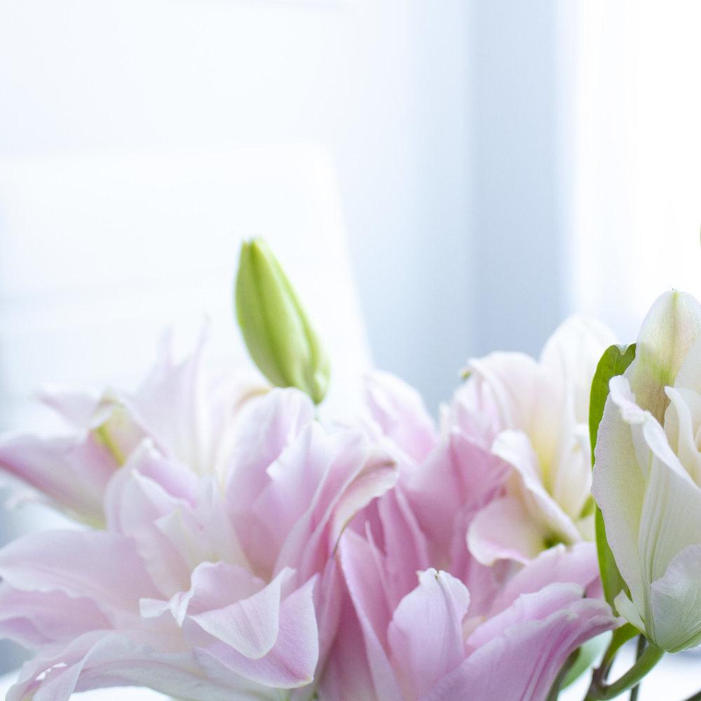 fresh blooms!