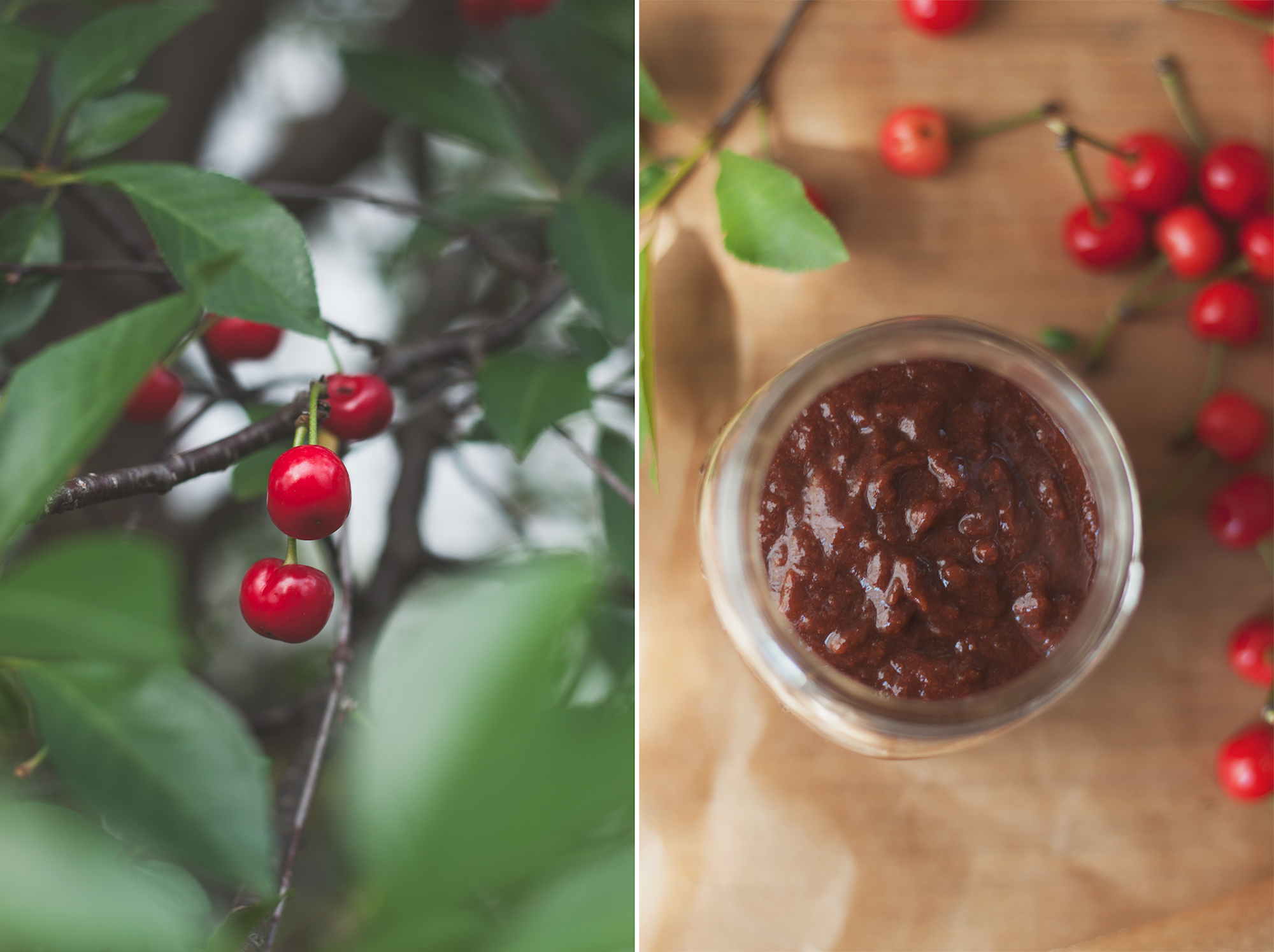 cherry barbecue sauce recipe by will frolic for food