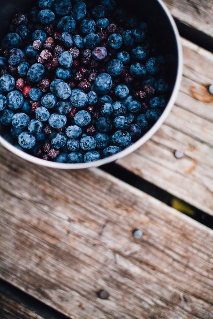 blueberries and huckleberries in montana | willfrolicforfood.com