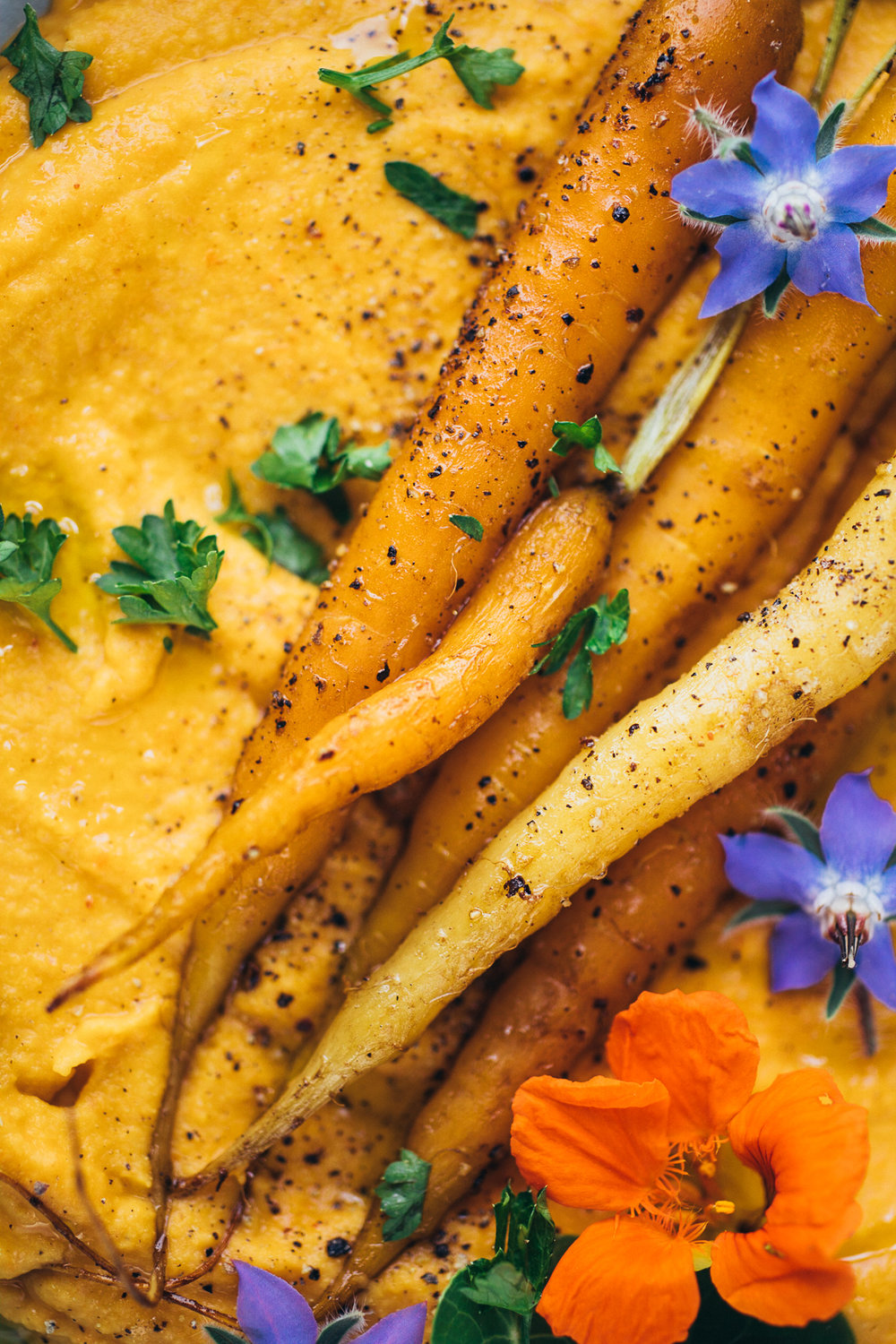 carrot-white-bean-dip-106.jpg