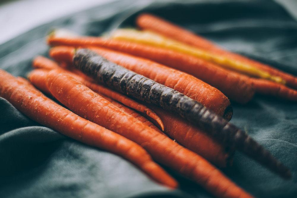 manitoba-carrots-6409.jpg
