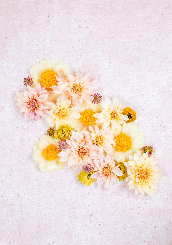 Floral-19.jpg
