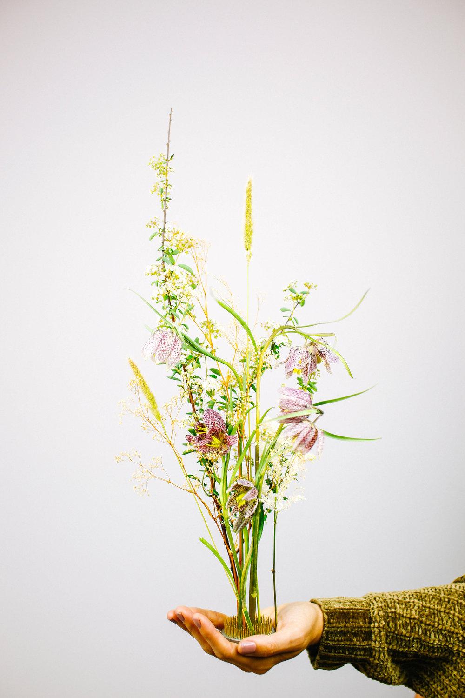 Floral-24.jpg
