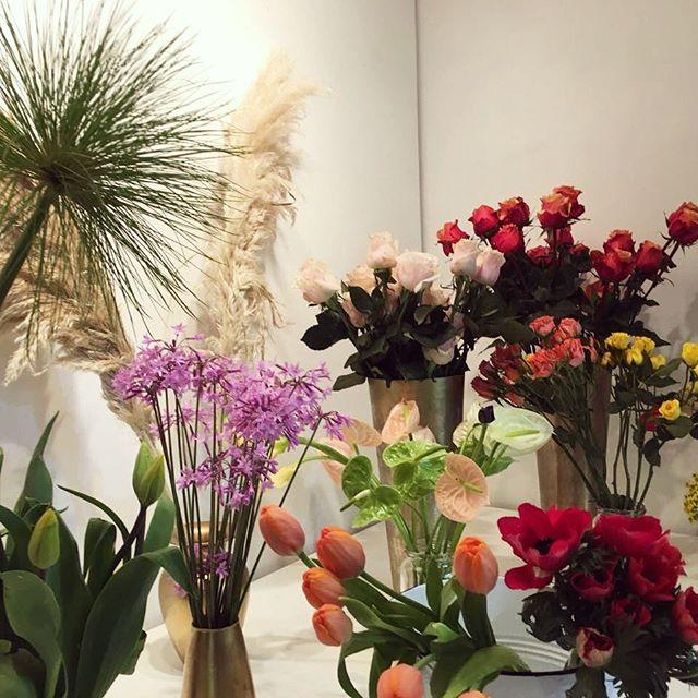 ¡No se pierdan hoy la muestra de arte floral de @barbarapiffre! A las 18:00 en nuestra galería, como parte de las actividades de @galeriaweekendsantiago.