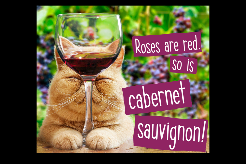 cat-wine.png