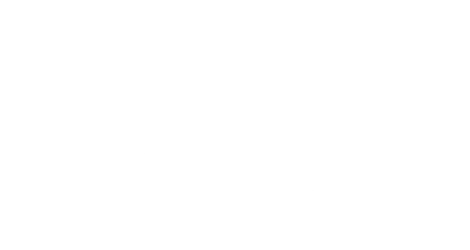 SD Campervans