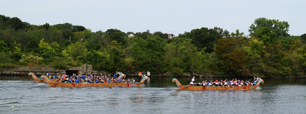 James Toomey - RI Dragon Boat Fest_race three boats.jpg