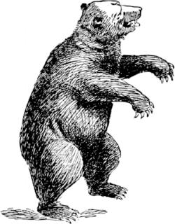 standing-bear web.png