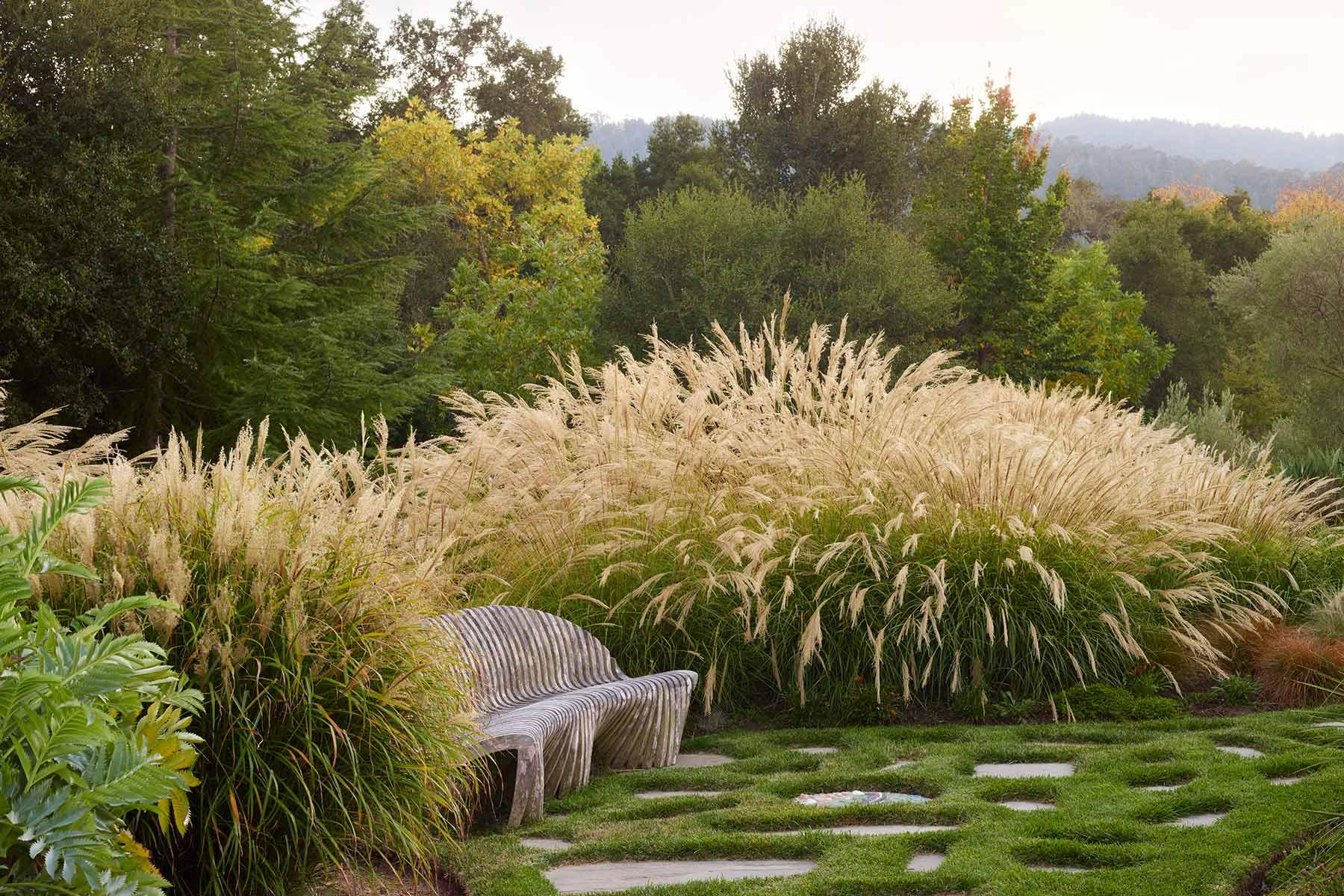South African Woodside — GardenArt Group Landscape Architecture & Design