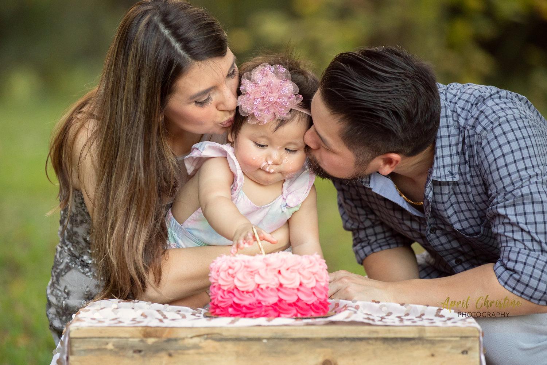 Fort Worth Family Photographer | First Birthday Smash Cake