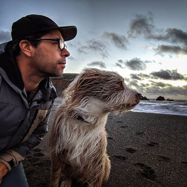 Taking it in 1-Dec-2018 #TheSal #beach #pacific #california #blessed #takeeverymomentin #dog #love #dogsofinstagram #briard #briardstagram #briardsofinstagram #pixel3 #snapseed