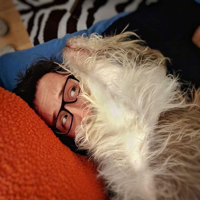 Pwnd. 16-Dec-2018 #TheSal #theboss #doeswhathewants #hadabath #fluffy #fluffydog #love #dogsofinstagram #briard #briardstagram #briardsofinstagram #pixel3 #snapseed