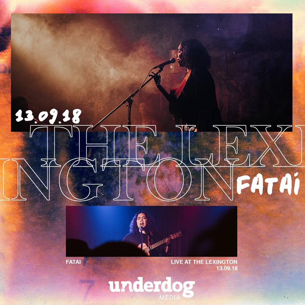 """""""THE LEXINGTON LIVE"""" BLOG POST -"""