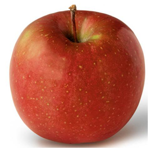 apple_freyburg.jpg