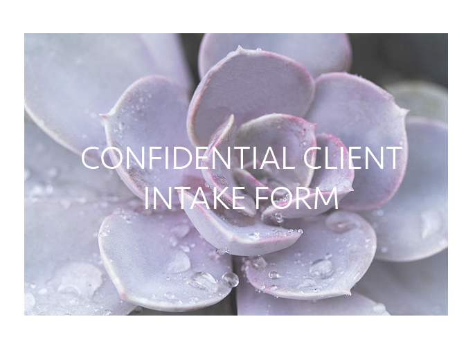 CONFIDENTIAL INTAKE FORM HEADER.jpg