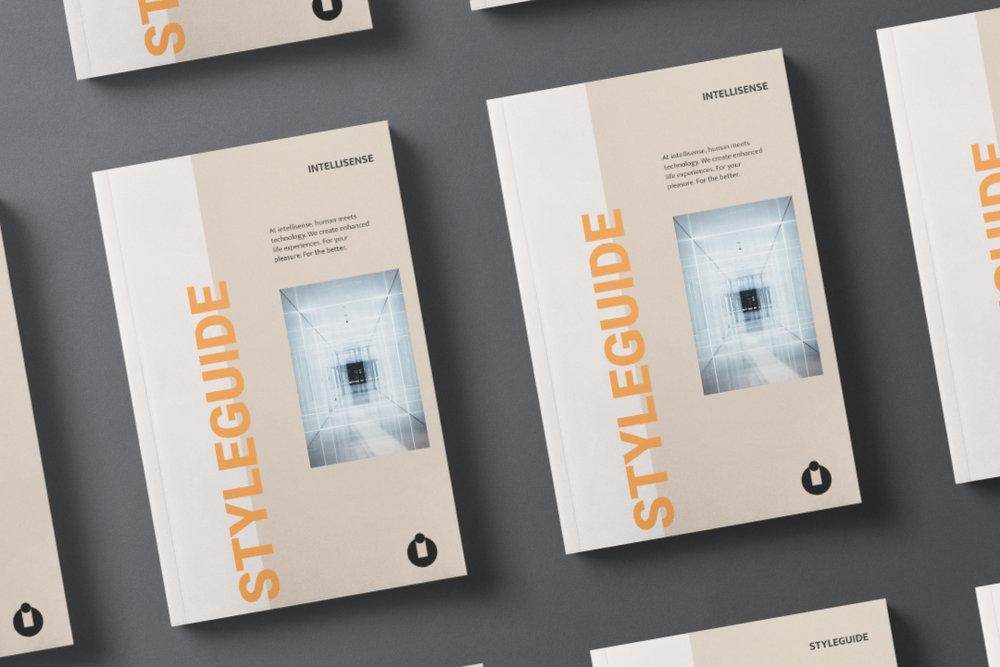 intellisense-vorschau-okkyo-branding-printmedien.jpeg