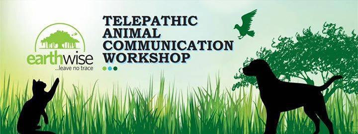 Telepathic Animal Communication workshop Bangalore March 2019.jpg