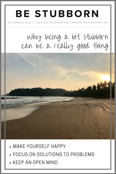 The benefits of being stubborn   Joanne Becker   Be Stubborn   Coaching   small business, creative coaching, resources, content creator