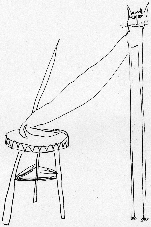 cat stool.jpg