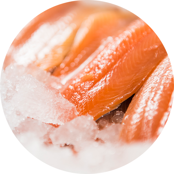 fresh-trout---circle.png
