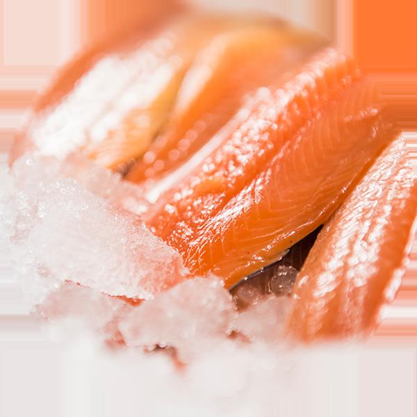 fresh-trout---circle.png