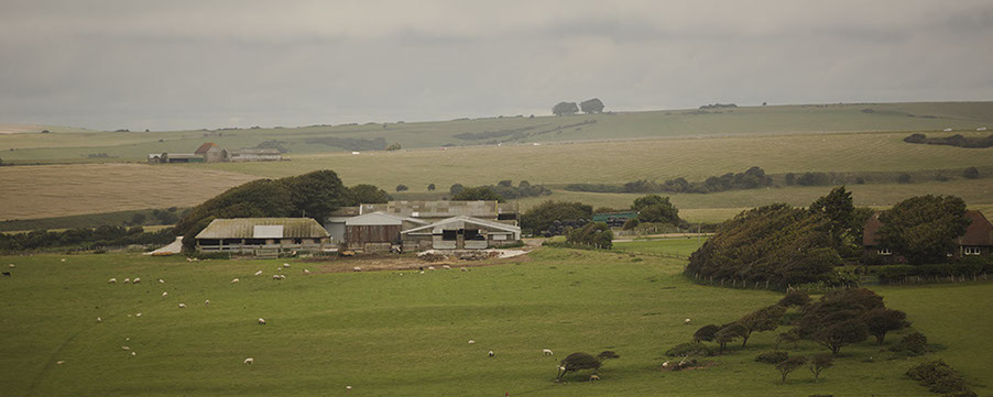 South Downs National Park -