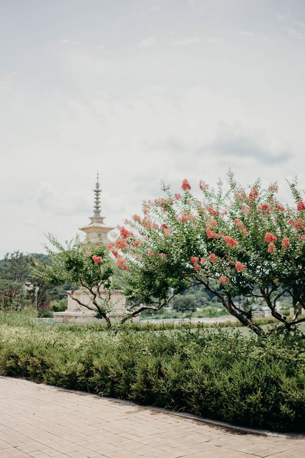 Gyeongju, South Korea: The City That Stole My Heart | On the Street Where We Live (aretherelilactrees.com)  Gyeongju National Museum